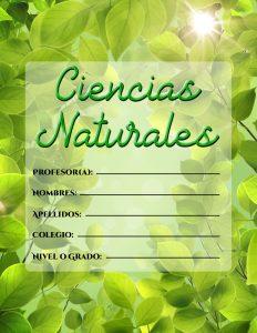 Caratulas de Ciencias Naturales con fondo de hojas verdes