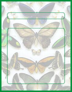 Diseños de Caratulas para Ciencia y Tecnología Naturales Mariposas