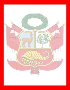 caratula del Perú con fondo del escudo nacional